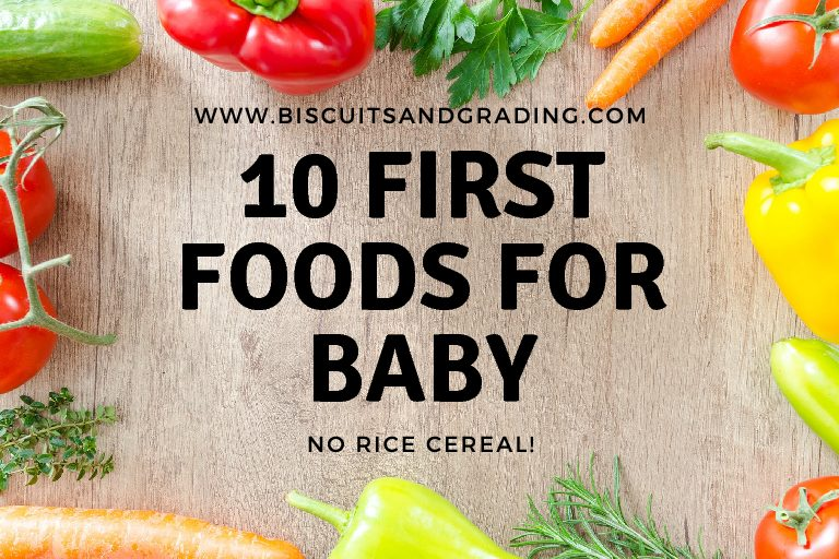 10 First Foods for Baby – No Rice Cereal!