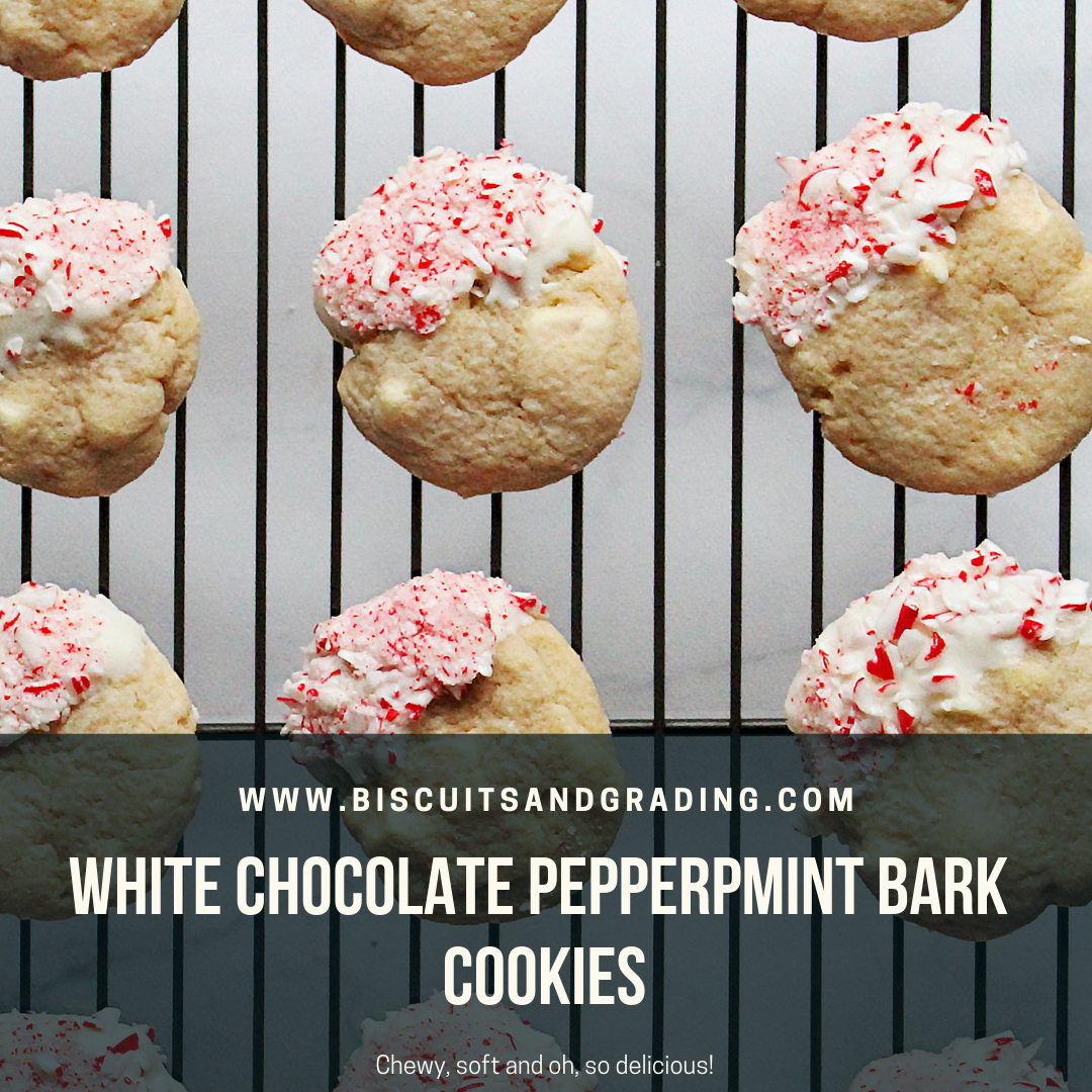 White Chocolate Peppermint Bark Cookies (Soft & Chewy!)