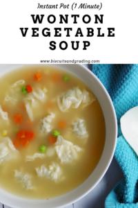 Instant Pot Healthy 1 Minute Wonton Soup #healthyrecipe #soup #instantpot #yum #foodblog