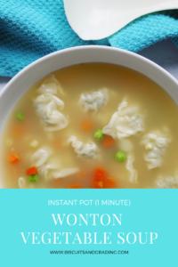 Instant Pot 1 Minute Healthy Wonton Vegetable Soup #instantpot #quickmeal #foodblog #healthyrecipe