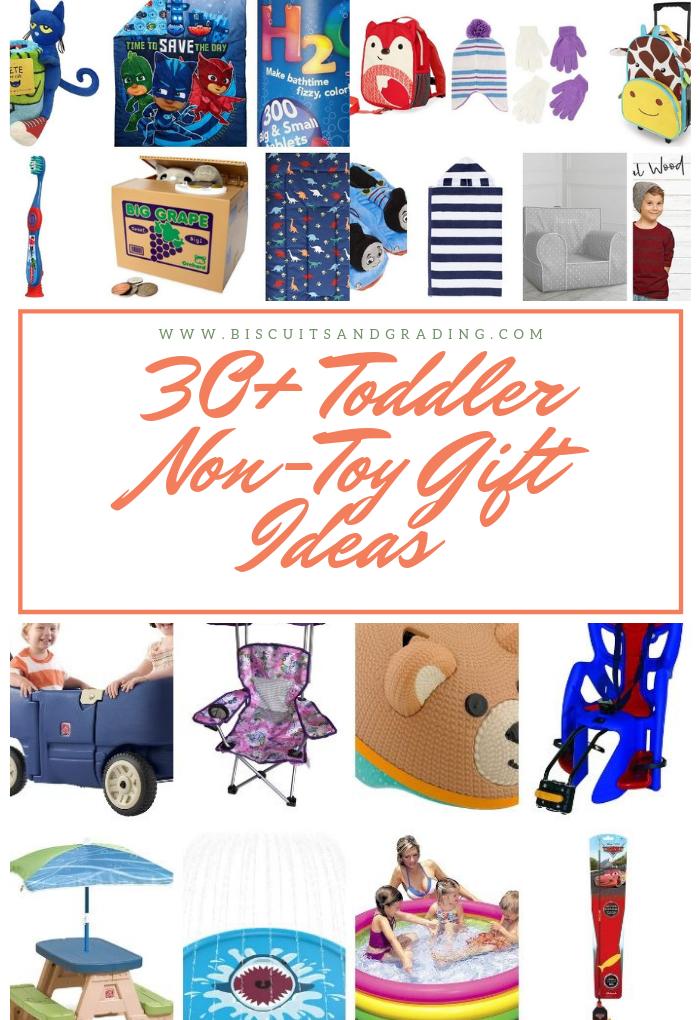 30+ Toddler Not Toy Gift Ideas
