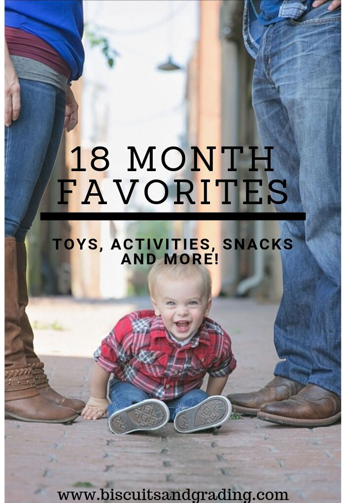 18 Month Favorites - a Year and a Half with Camden