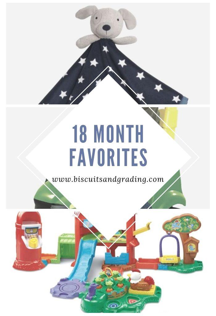 18 month favorites collage pinterest image