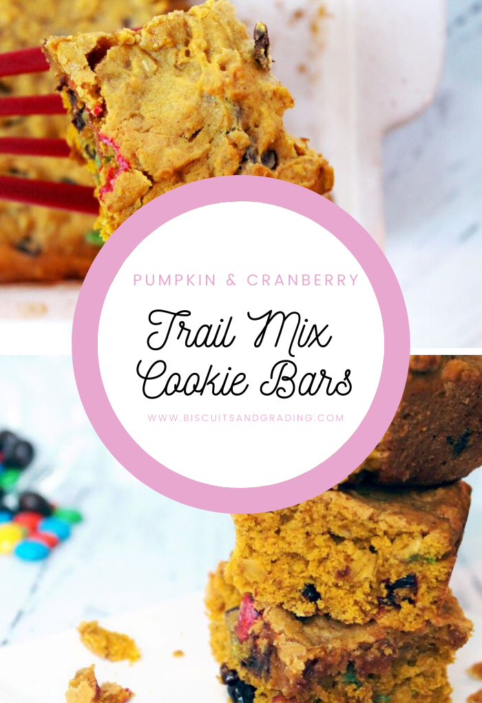 Pumpkin and Cranberry Trail Mix Cookie Bars