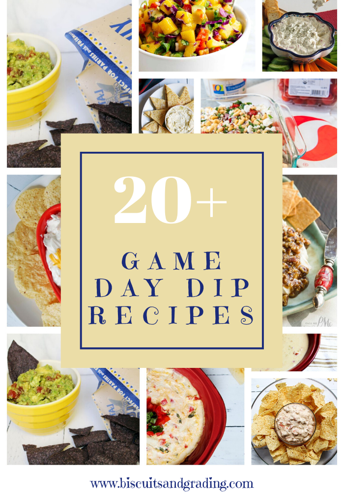 pinterest image 20 super bowl dip recipes