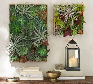 faux-succulent-wallto-entertain-yourself-at-home
