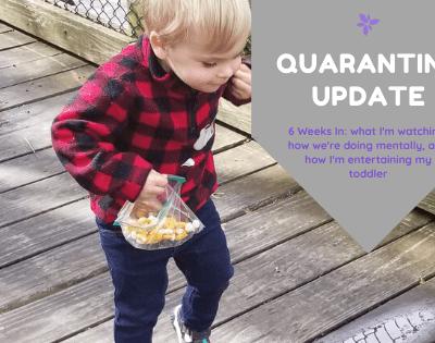 Coronavirus Quarantine Update - 6 Weeks In