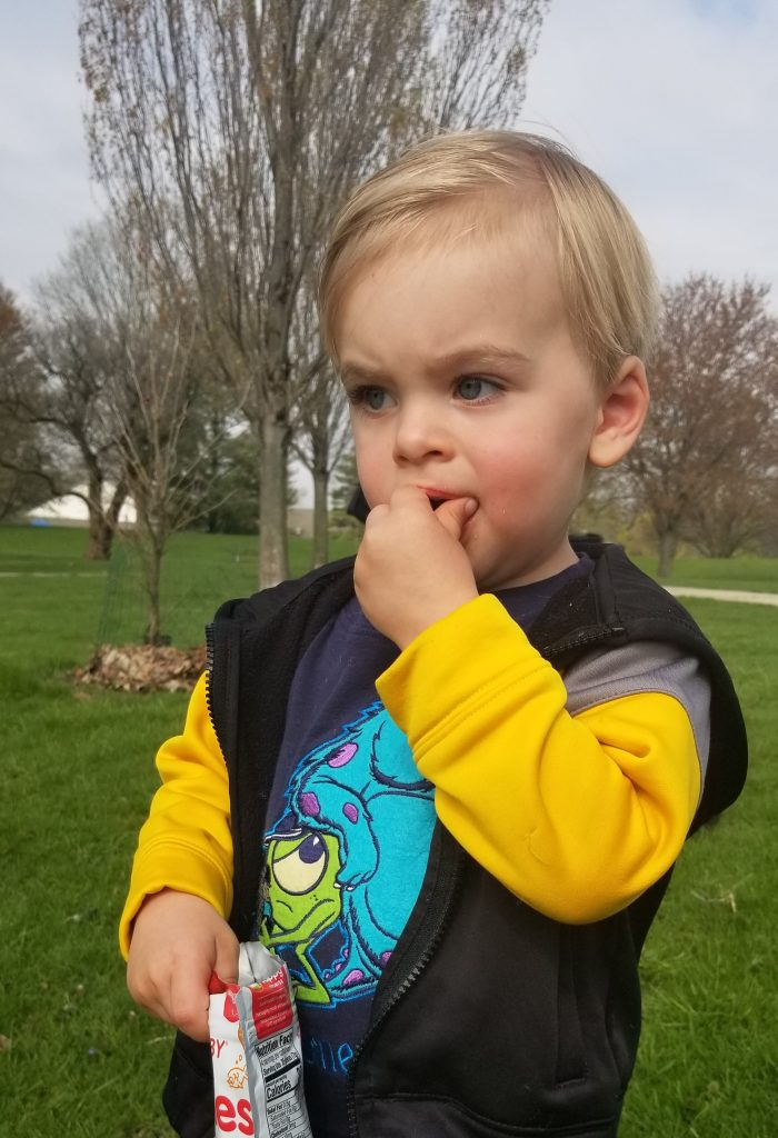 toddler watching geese with snack
