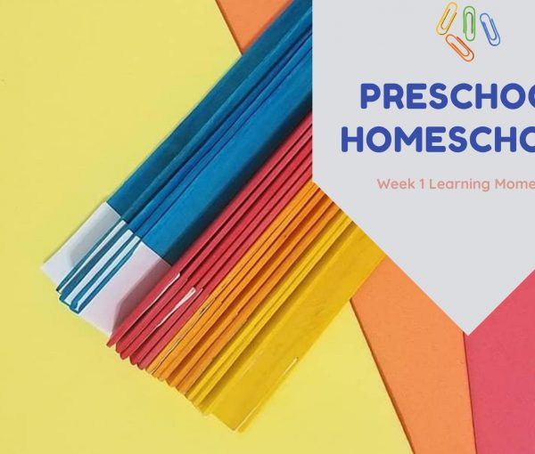 Week 1 Preschool Homeschool Activities Round Up