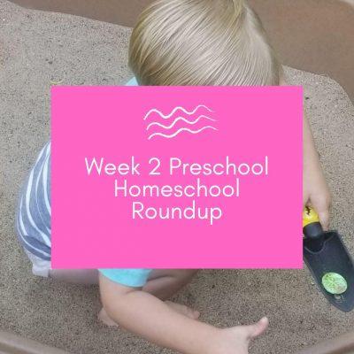 Week 2 Preschool Homeschool Activities Roundup