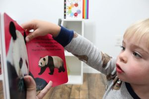 boy reading baby animals books for teaching