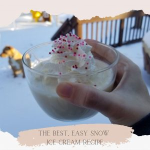 blog banner best easy snow ice cream