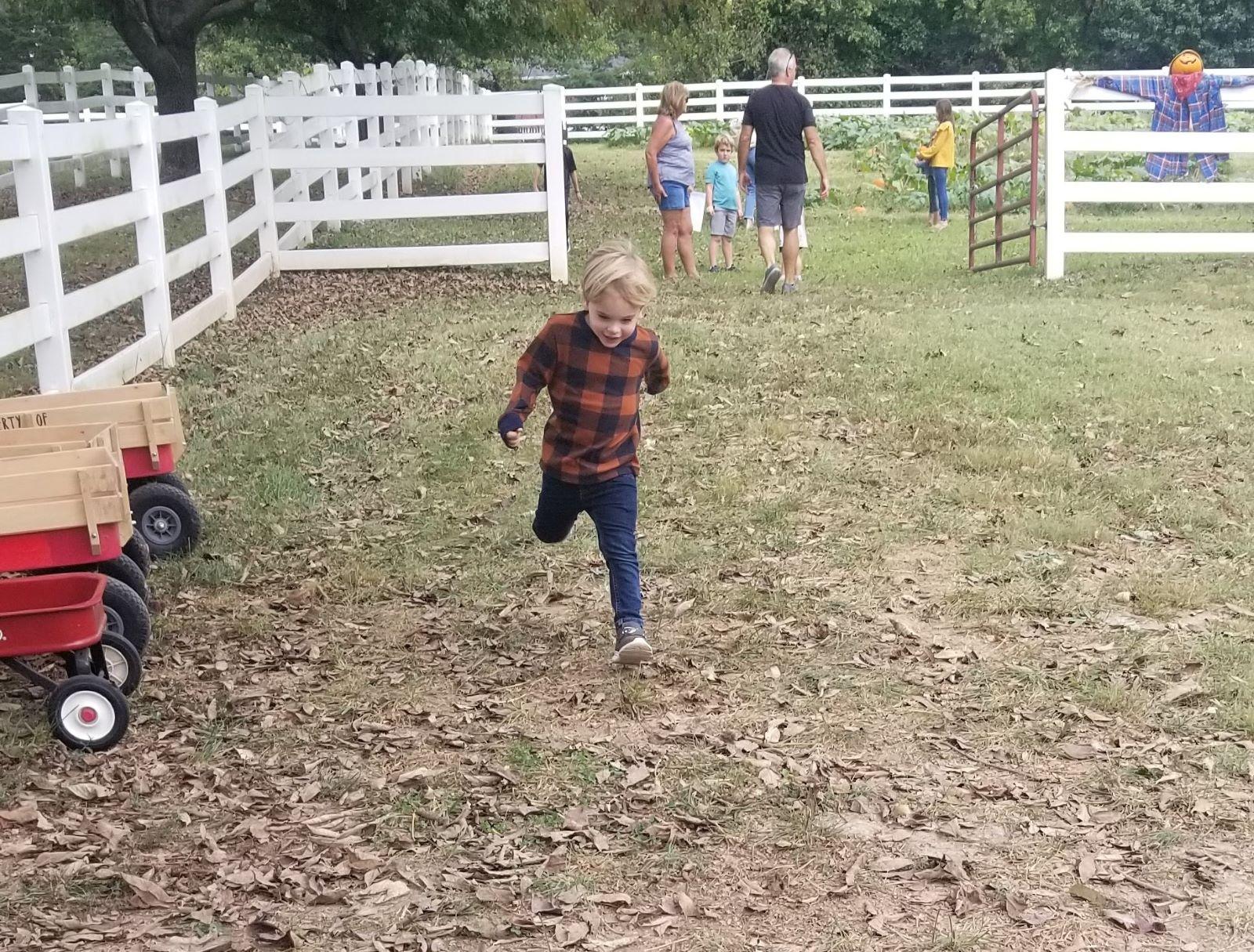 boy running through Grant's Farm fall fest 1